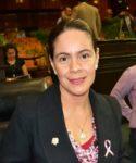 Nombramiento de ex tesorero de Duarte como dirigente del PRI estatal no afecta al partido: Mazari